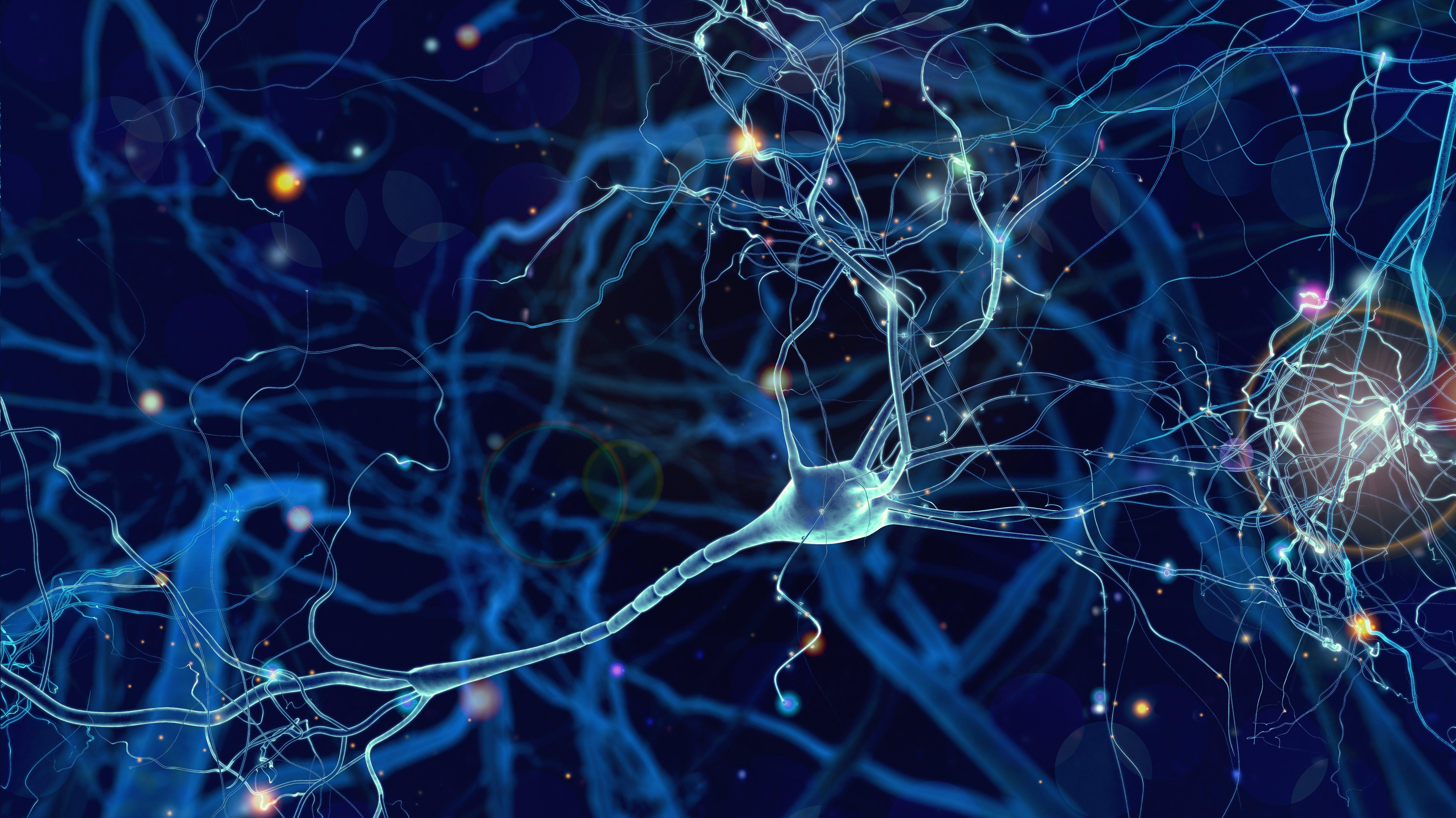 Bitvore Announces integration with Microsoft Azure Synapse Analytics